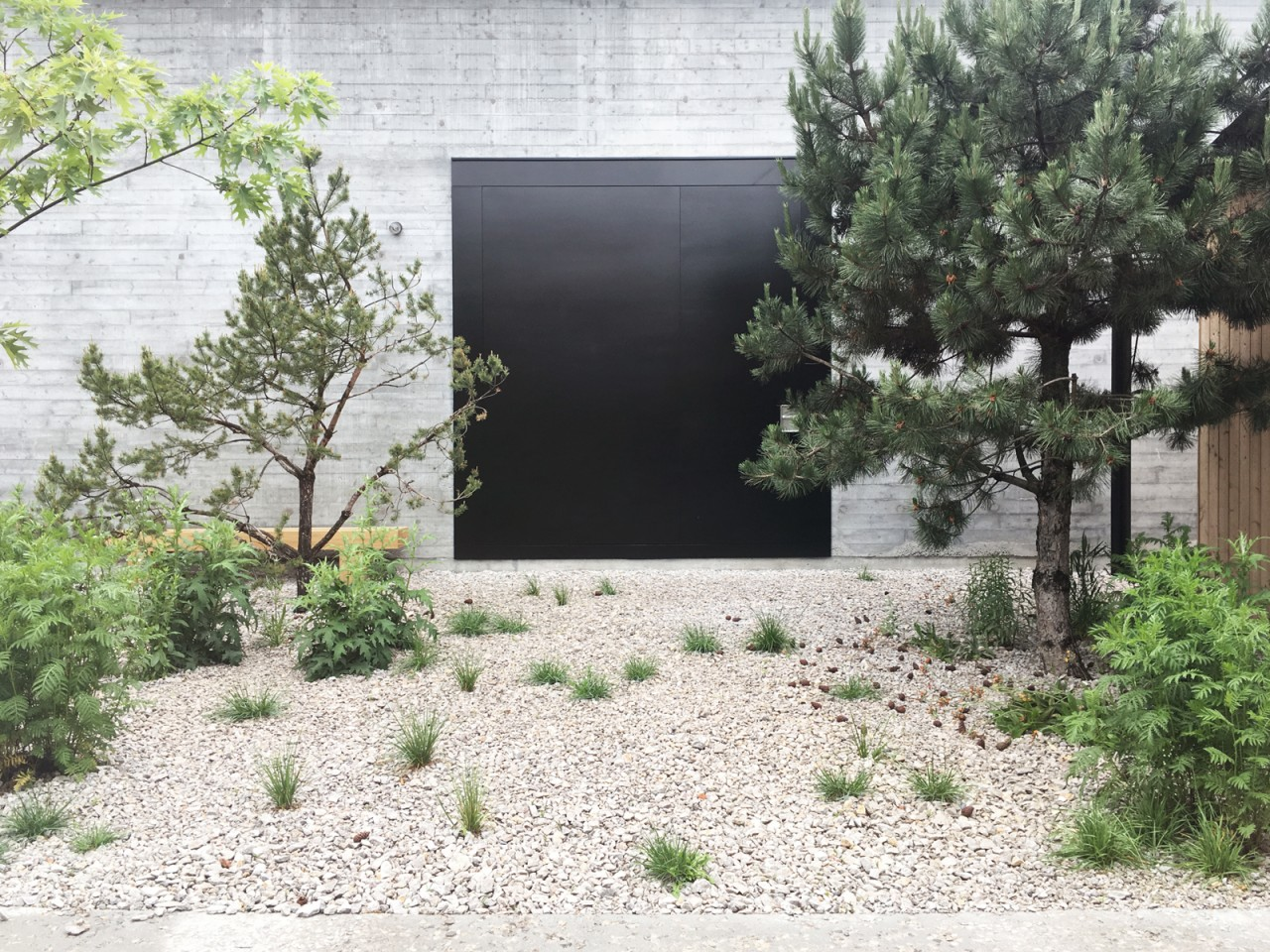 Landscape Practice The Artist's Garden