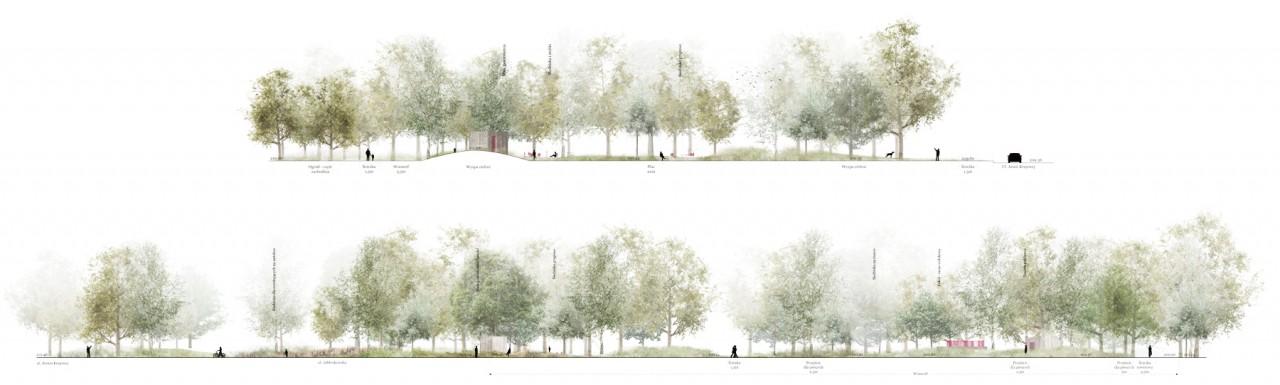 Landscape Practice Młynówka Królewska Park